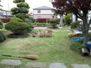 戸田市除草5.25②