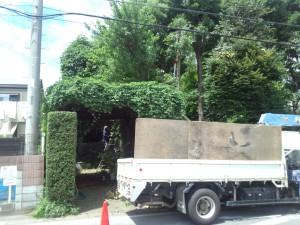 坂戸植栽の年間管理