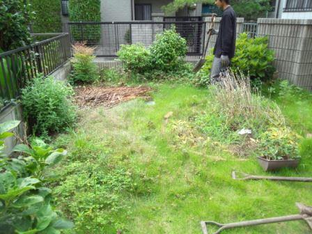 蓮田市芝生剥がし・砂利敷き工事着工前④