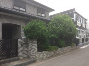 入間市の剪定工事 完了!、東松山市の外構造園工事 モッコクの移植