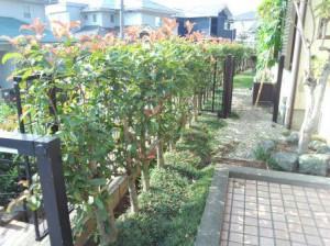 東松山高坂ニュータウン庭工事②