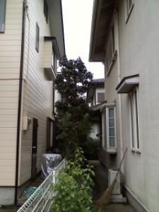 杉戸鎌田邸⑥