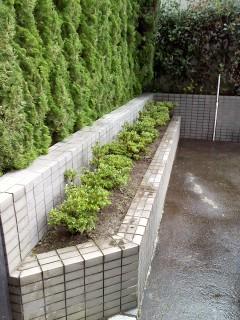 越谷年間管理 さつき植替と灯篭組みと宅内人口植物の清掃、戸田ヤマボウシ植込み