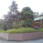 東松山市お庭の手入れ