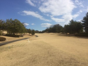 休日ゴルフ