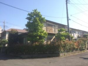 松伏町のお庭工事 水栓取付、東松山市の庭木の手入れ